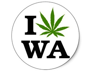 i_love_cannabis_marijuana_washington_sticker-p217103239482288662qjcl_400-thumb-400x311