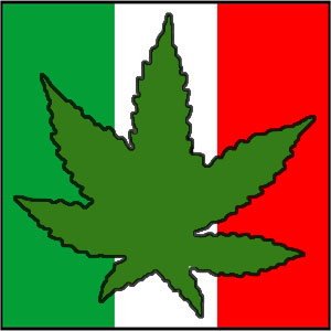mexico-flag-marijuana